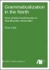 Grammaticalization in the North: Noun phrase morphosyntax in Scandinavian vernaculars